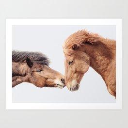 Horse Love - Nature Photography Art Print