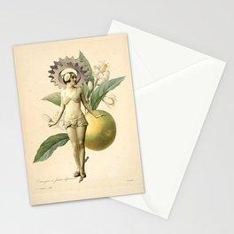 Oranger Stationery Cards