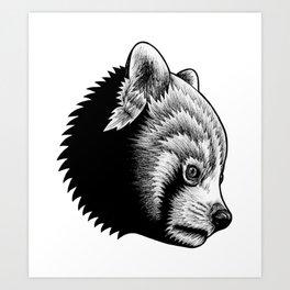 Red panda - ink illustration Art Print