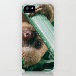 Baby Sloth Playing iPhone Case