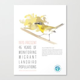 45 Years of Monitoring Landbird Populations - Yellow-breasted Chat   Canvas Print
