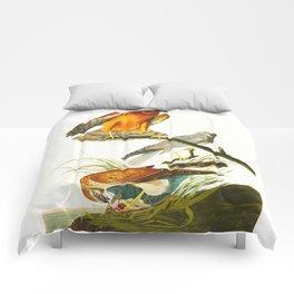 Marsh Hawk Comforters