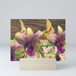 The orchids are blooming. Mini Art Print