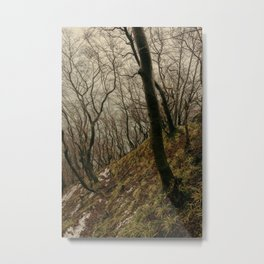 ENCHANTED FOREST / 03 Metal Print