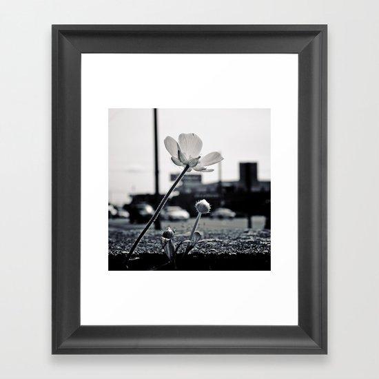 Roadside beauty Framed Art Print
