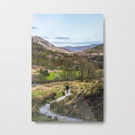 On the Trail Metal Print