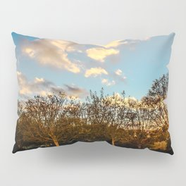 Getty Trees Pillow Sham