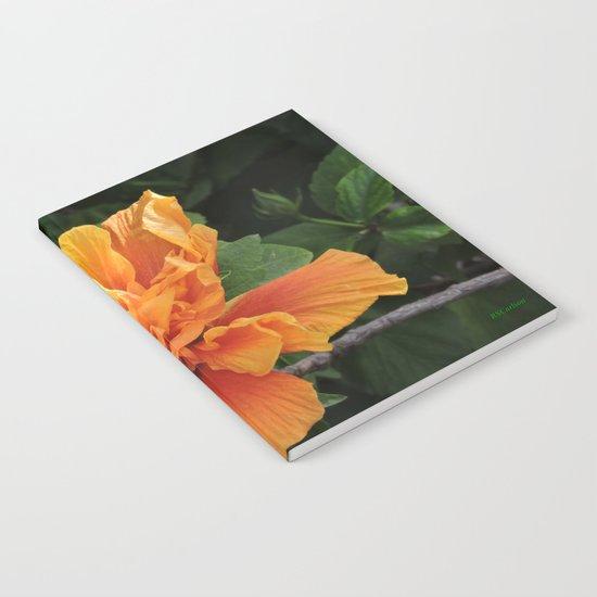 The Golden Double Hibiscus Next Door Notebook