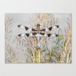 dragonfly tank Canvas Print