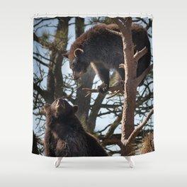 Bear Cubs At Play Shower Curtain