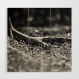 Nook #1 - Fomapan Creative 200 (4x5 film) Wood Wall Art