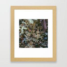 Infinite Shades of Green No. 3 Framed Art Print