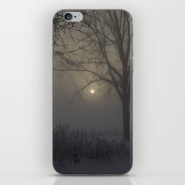 A Cold Winter Morning in Wisconsin iPhone Skin
