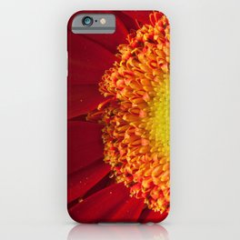Nature's Beauty Botanical / Nature / Floral Photograph iPhone Case