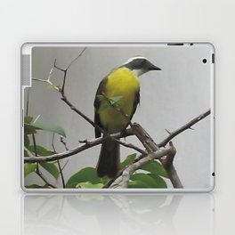 Chichen Itza Bird Laptop & iPad Skin