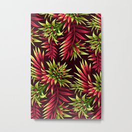 Aechmea Fasciata - Green/Pink Metal Print