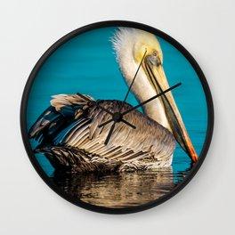 Bird - Brown Pelican - Study 5 Wall Clock