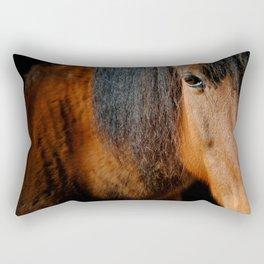 Eye to the heart Rectangular Pillow