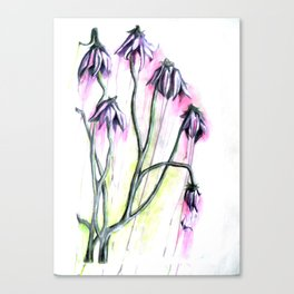 """Flowers II"" Canvas Print"
