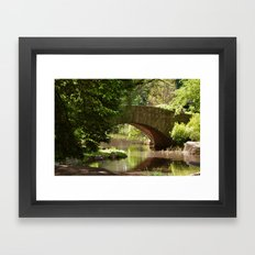 Central Park Bridge Framed Art Print