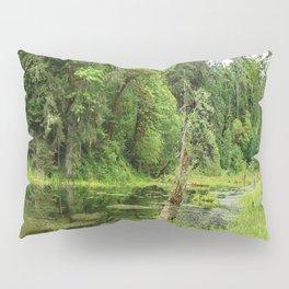 Hoh Rainforest Scene Pillow Sham