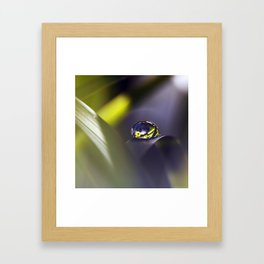 Holy Drop Framed Art Print