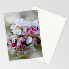 Autumn Bloom Stationery Cards