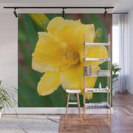Yellow Daylily by Teresa Thompson Wall Mural