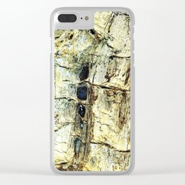 Journey to the Fossil Beds Clear iPhone Case