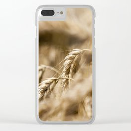 dry mature ears Clear iPhone Case