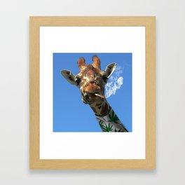 giraffe 4 Framed Art Print