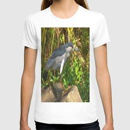 Black-crowned Night-Heron T-shirt