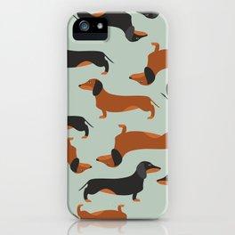 Dachshund, Taksa, Teckel, Weenie dog iPhone Case