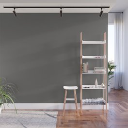 Pantone Pewter Gray 18-5203 Trendy Earth Tone Solid Color Wall Mural