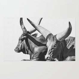 Animal Photography | Ankole-Watusi | Cattle | Bull | Steer | Black and White Rug