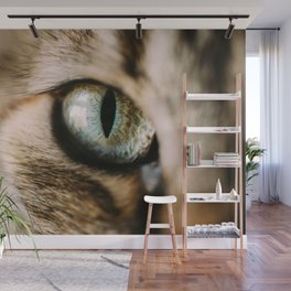 Eye of the Tiger Wall Mural
