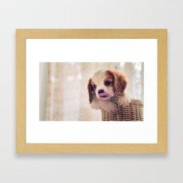 Fuzzywazzi Framed Art Print