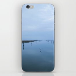 Double blue iPhone Skin