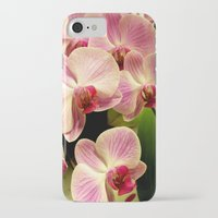orchid iPhone & iPod Cases featuring orchid by Bitifoto