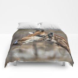 Giraffe 5 Comforters