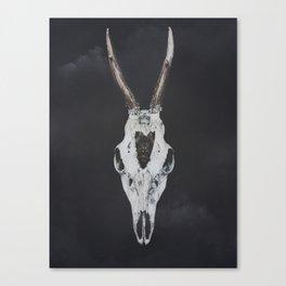 Roe Deer Skull with Death Hawk Moth Canvas Print