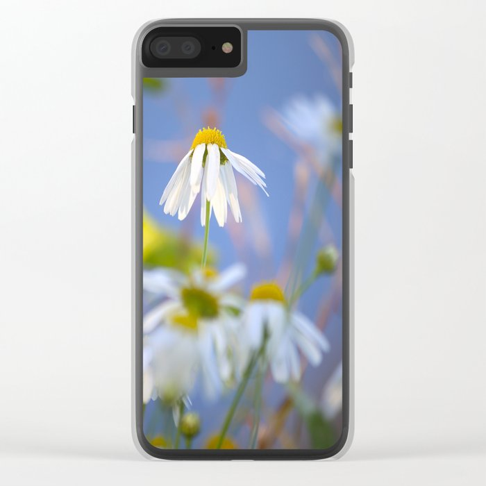 Daisies on a sunny summer day with blue sky Clear iPhone Case