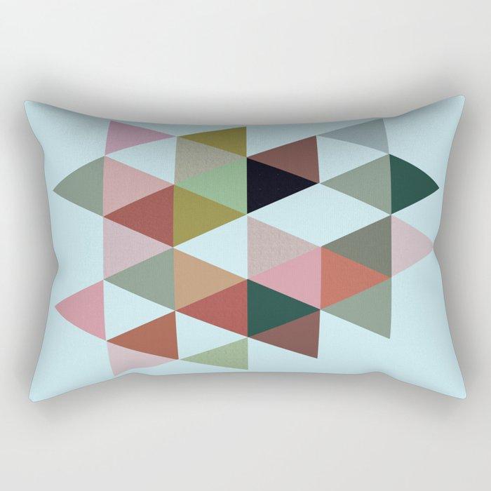 #842 Rectangular Pillow