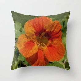 Glorious Nasturtium Throw Pillow