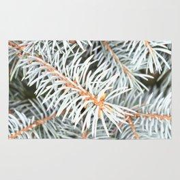 Tree | Trees | Silver Spruce | Ontario, Canada | Nadia Bonello Rug