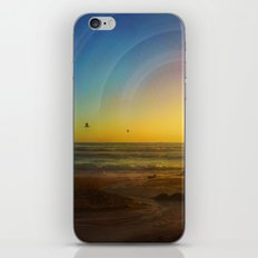 Birds Seeking iPhone & iPod Skin