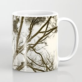 Leafless Tree in Winter I Coffee Mug