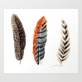 Dotted & Striped Feathers Art Print