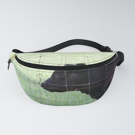 Fencing Cow Fanny Pack