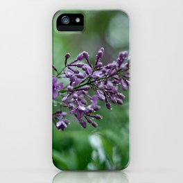 Rainkissed Lilacs iPhone Case
